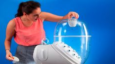 Tabletop bug incubators: The must-have kitchen appliance of the future?
