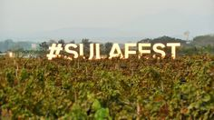 Want to enjoy #wine and #food in a #fun way? The Amazing #SulaFest of #Nasik is the place for you: The Amazing Sula Fest of Nasik – Wine, Music, Food, S... - Trisha Sen - Google+
