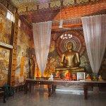 Sri Lanka, Painting, Home Decor, Round Trip, Homemade Home Decor, Painting Art, Paintings, Paint, Draw