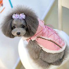 犬服ブランド【ABBYABBY (アビーアビー)】 クイントシャモアパーカー 犬の服サイズ(XS〜XL)