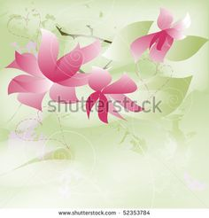 Flower gift - stock photo