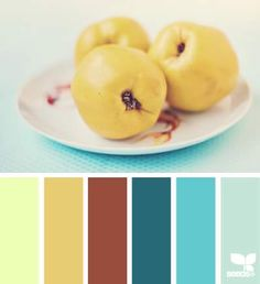 DesignSeeds® FB  { quince hues }  February 18 2013