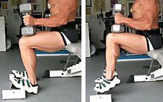 Lower leg exercises-TA raises - Google Search