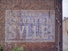 Demander la Chicorée de la SYLLE (Courcelles -Belgique)