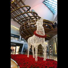 "vegas360: ""A giant reindeer of lights at the city center mall in Las Vegas. Christmas 2014.  #instagood #photooftheday #beautiful #instalike #amazing #bestoftheday #nofilter #lasvegas #lasvegasstrip #hot_shotz #ig_exquisite #vegas #vegasnow #worldbestgram #splendid_shotz #visual_spotlight #citycenter #interiors #christmas #holidays #december #decorations #christmastime #xmas #mall #crystals"""