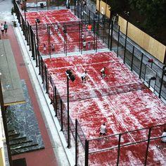 La gente de Padel Albaro Génova ya está jugando a en nuestras pistas de #padel!! #padelitalia #tupistadepadel #pistasdepadelmanzasport #padelinternational #padelalbarogenova