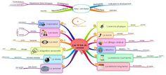 Les 12 lois du cerveau Mind Map