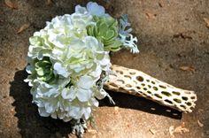 Hydrangea, succulent