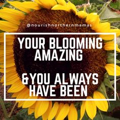 Nourish Northern Mamas Inspiration that you are blooming amazing. Strength Quotes For Women, Quotes About Strength, Woman Quotes, Self Care, Amazing, Inspiration, Food, Biblical Inspiration, Quotes On Strength