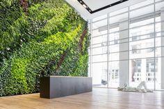 Foundry III Living Wall, 505 Howard St. Green Wall, San Francisco, CA - Habitat Horticulture