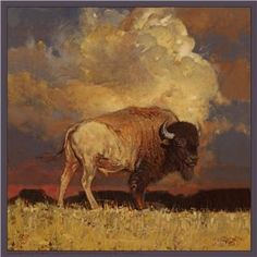 Where the buffalo roam - gorgeous depiction of the iconic American Bison - We are proud to introduce a new collection based on the art of Jeff Segler. Wildlife Paintings, Wildlife Art, Animal Paintings, Animal Drawings, Art Drawings, Drawing Animals, Buffalo Animal, Buffalo Art, Native Art