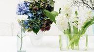 9 tips to keep flowers fresh longer   Photo: Scott Hawkins