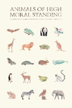 I'm pretty sure all of these animals have been my favorite animal at one point.