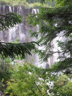 Pearl waterfall - Jiuzhai Valley National Park, Jiuzhaigou, Sichuan, China