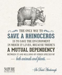 """""""The only way to save a rhinoceros is to save the environment in which it lives, because there's a mutual dependency between it and millions of other species of both animals and plants."""""""