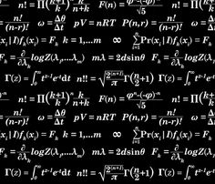 Equations and Equations - Black fabric by primenumbergirl on Spoonflower - custom fabric