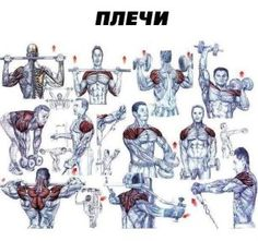Shoulders Workout Plan - Healthy Fitness Training Routine Back - Yeah We… Bodybuilding Training, Bodybuilding Workouts, Bodybuilding Motivation, Chest Workouts, Easy Workouts, Chest Exercises, Shoulder Mass Workout, Shoulder Exercises, Sport Studio