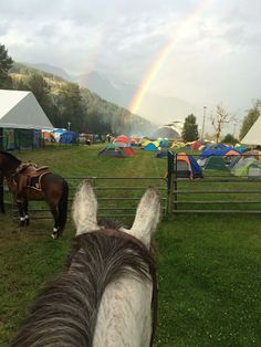 Through the ears with Mounted Patrol at Pemberton!