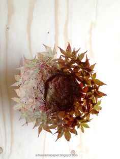 bowl of autumn leaves - DIY