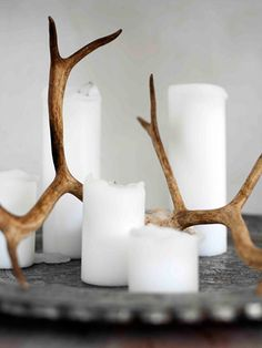antlers + candles