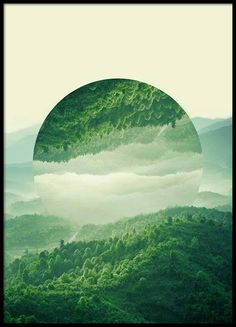 Reflected forest Poster in the group Prints / Sizes / 50x70cm | 20x28 at Desenio AB (2039)
