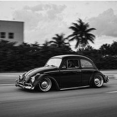 #vw#bug