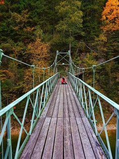 Insider tip in Lower Austria - Ötscher Tormäuer Nature Park - Nature & hiking – Ötscher Tormäuer nature park: the most beautiful hike in Lower Austria - Camping And Hiking, Camping Hacks, Hiking Trails, Camping Ideas, Reisen In Europa, Austria Travel, Camping Photography, Wanderlust Travel, Heart Of Europe