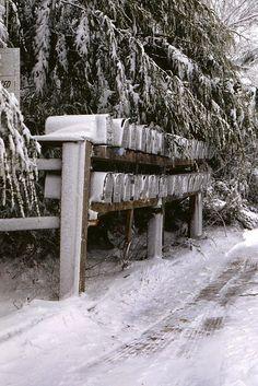 """Mailbox Row"" Come snow, sleet, rain or shine, these mailboxes dutifully serve their rural residents"