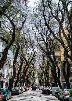 Visit Argentina, Argentina Travel, Montevideo, Scenic Photography, Landscape Photography, Night Photography, Landscape Photos, Storm London, Argentina Culture