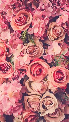 Wallpaper iPhone /beautiful flowers/pink roses ⚪️