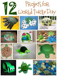 Today is World Turtle Day. Why not celebrate by making your own turtle? You can use a variety of household and craft items to make a collection of fun and unique turtles for yourself and everyone e…