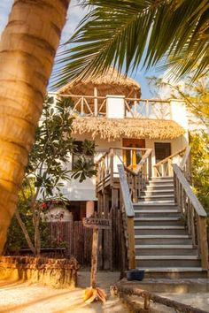 Thatch Caye Resort   Belize