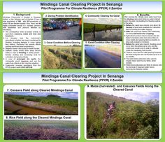 Pilot Programme for Climate Resilience: Canal Clearing in Zambia Water Benefits, Thing 1, Livestock, Climate Change, Agriculture, Pilot, Posters, Community, People