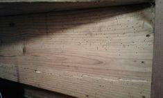 Historic wood worm Mother Nature, Hardwood Floors, Homes, Shape, Wood Floor Tiles, Wood Flooring, Houses, Home, Computer Case