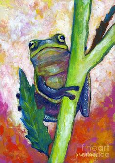 Timid Tree Frog Painting by Eve Wheeler - Timid Tree Frog Fine Art Prints and Posters for Sale