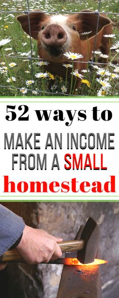 Seriously the most helpful list of money making ideas with not a lot of land...and tons of good resources for getting started. #homesteading #sidehustles #moneyfromhome #workfromhome