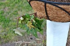 how to mount flower baskets onto wooden posts, curb appeal, diy, flowers, gardening, how to, repurposing upcycling, woodworking projects, Holes were cut in the sides of the basket liners so that some of the plants would drape out of the side