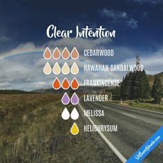 Clear Intention - Essential Oil Diffuser Blend
