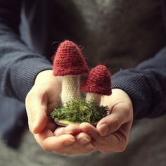 knitted mushrooms ~