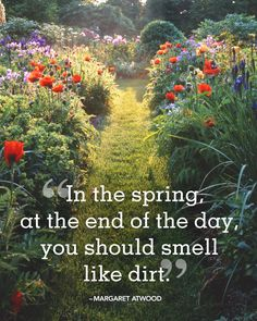 20 Beautiful Spring Quotes for the Years Best Season In the spring at the end of the day you should smell like dirt. The post 20 Beautiful Spring Quotes for the Years Best Season appeared first on Diy Flowers. Spring Fever, Spring Day, Amazing Gardens, Beautiful Gardens, Beautiful Flowers, Container Food, Flower Quotes Love, Spring Quotes, Spring Sayings