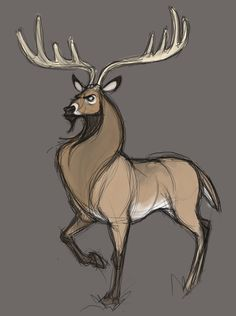 Oh, I love this guy! Animal Sketches, Animal Drawings, Cool Drawings, Illustrations, Illustration Art, Doodle Drawing, Deer Drawing, Sketch Style, Deer Art