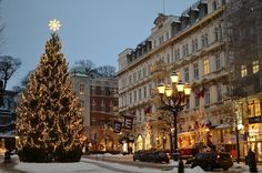 Christmas lights brighten up the dark season in Scandinavia . Here are some of the lights in Helsingborg , southern Sweden : . Sweden Christmas, Christmas Scenery, Christmas Town, Noel Christmas, Winter Christmas, All Things Christmas, Christmas Lights, Christmas Markets, Scandinavian Countries