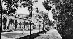 Una nostálgica vista llena de detalles, la vieja calle de Ciprés, hoy Jaime Torres Bodet, en los años veinte. Escenas de la ya centenaria Santa María  la Rivera.