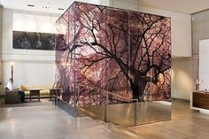 Decorative Safety Glass has never been more versatile or easy than with DigiGlass. Imagine being able to create dramatic designs or lifelike photographic images in a laminated safety glass – contact us to find out how. Commercial Design, Commercial Interiors, Office Interior Design, Interior And Exterior, Window Graphics, Office Graphics, Fleur Design, Environmental Graphic Design, Hospital Design
