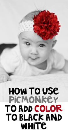 Jenerally InformedGuest Post: Making Photos Pop With Picmonkey - Jenerally Informed
