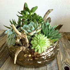 "Bronze Succulents | Large : A variety of succulents adorn our textured bronze pot with woodland accents. (Size: 9x10"") www.austinsucculents.com"