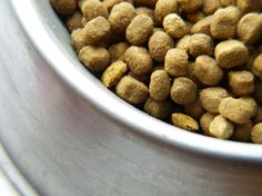 The Scoop on Homemade Dry Dog Food-Benefits & Recipe: 101 Dog Care Tips- Tip 25 - Best Bully Sticks Healthy Dog Blog