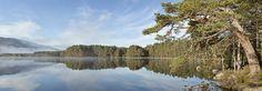 Loch Panorama