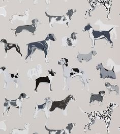 Working Dogs Wallpaper Washable Charcoal /& Silver Off White