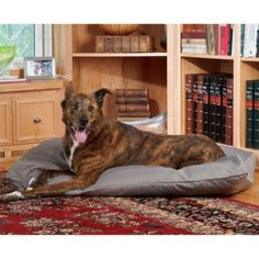 Brutus Tuff Petnapper Dog Bed